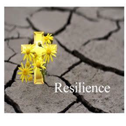 Picture of Building Resilience and Finding Joy